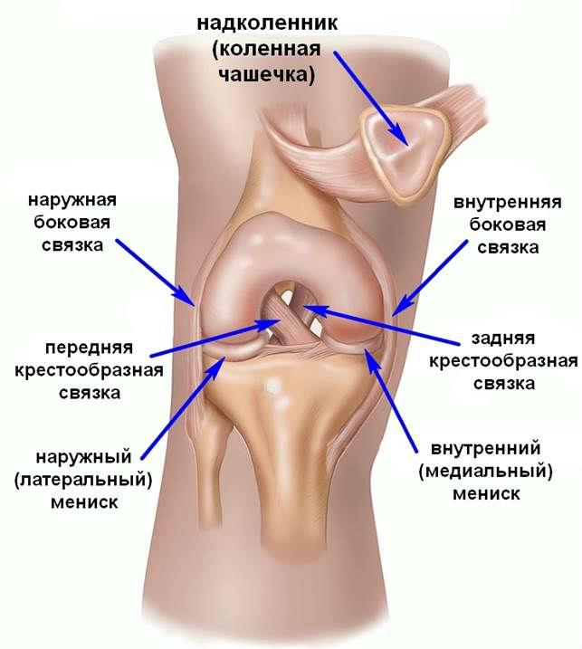 Причины боли в коленном суставе у женщин и мужчин при сгибании и ...