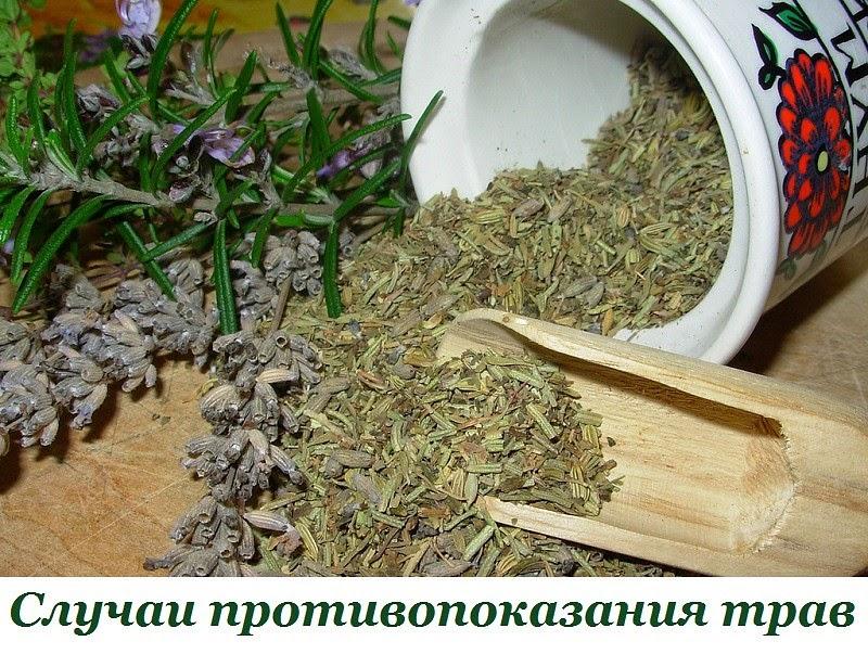 Травы для похудения сжигающие жир, сбор трав отзывы об